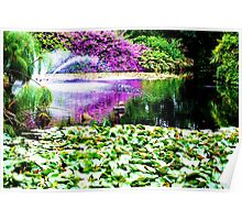 View of the pond ~ Botanic Gardens Poster