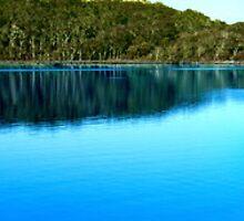 Western Australia by Julia Harwood