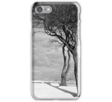 Winter Warriors 2 iPhone Case/Skin