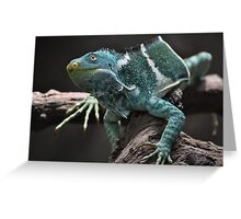 Beautiful Reptile  Greeting Card