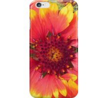 red fire flower iPhone Case/Skin