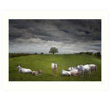 9 cows to Tree Art Print