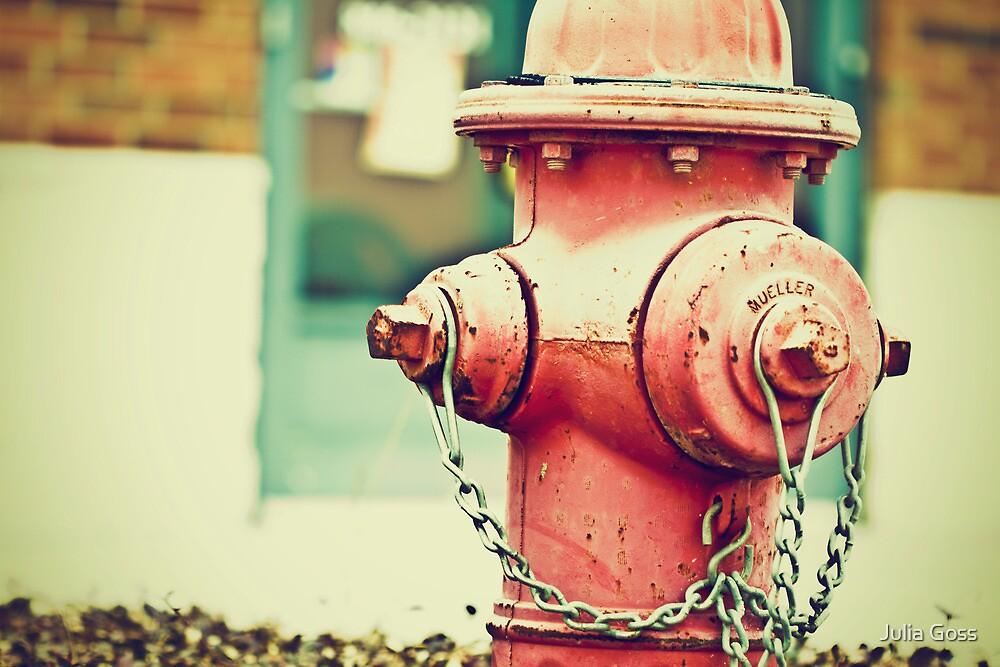 Addiction to Firehydrants by Julia Goss