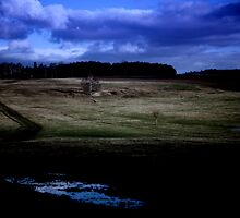 Countryside Landscape at Night by Tom Prokop