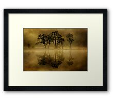 Misty Skeletons Framed Print