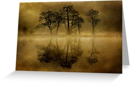 Misty Skeletons by Karl Williams