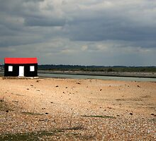 Rye Harbour Shed by Jennifer Vollebregt
