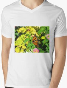Beauty All Around Mens V-Neck T-Shirt