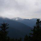 Blue Mountains II by rferrisx
