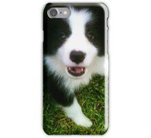 Hello Puppy - Border Collie iPhone Case/Skin