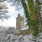 Yelverton Church by DIANE  FIFIELD