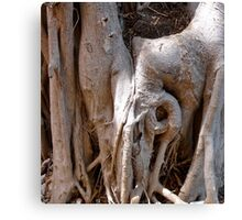 Tree Femininity Canvas Print