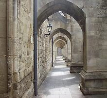 Cathedral walkway by blueart