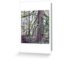 Cedar in oils Greeting Card