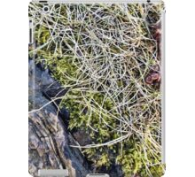 Silver Maple Root, Moss, Grass, Flower iPad Case/Skin