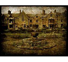 Broadfield Vineyard Photographic Print