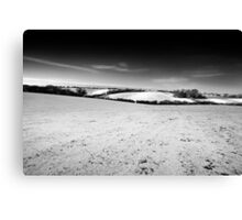 Home View BW Canvas Print