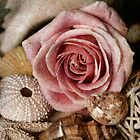 Rustic Rose by Carolyn Staut