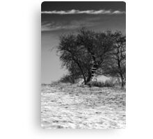 Sky Ladder BW Canvas Print