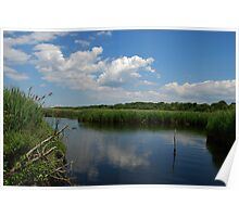 Brown's Creek on a summer day Poster