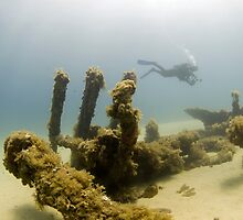 wreck of the HMS maori by spyderdesign