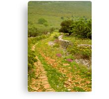 Greek Path Canvas Print