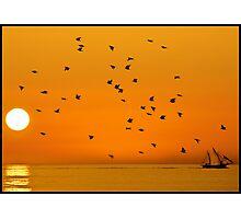 The Wonderful Stillness of the Ocean Photographic Print