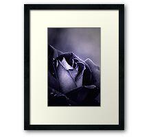 Midnight Light Framed Print