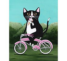 Ice Cream Bicycle Cat Photographic Print