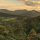 Tallebudgera Valley panorama by Murray Swift
