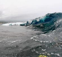 South Side Big Island by Vince Gaeta