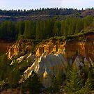 Molokoff Diggins Panoramic by the57man