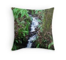 Forest Stream - Glenabo Woods, Cork, Ireland Throw Pillow