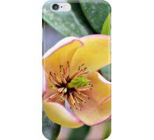 A Judy Zuk Magnolia iPhone Case/Skin