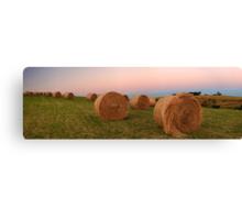 Gippsland hay rolls  Canvas Print