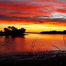 South Yunderup, Western Australia by Juanita Marchesani