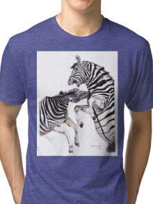 Zebra Fight Tri-blend T-Shirt