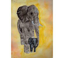 Mama and Baby Elephant Photographic Print