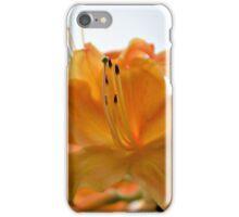 Sunrise Azalea iPhone Case/Skin