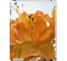 Sunrise Azalea iPad Case/Skin