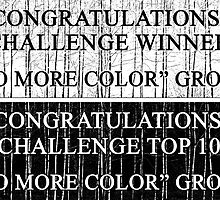 """No More Color"" Challenge Banner by Barbara  Corvino"