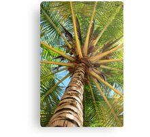 Caribbean Palm Metal Print