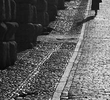 Street in Segovia Spain by Mariano57
