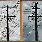 Wires and poles by Pete Gailey