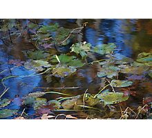 Drifting on Altair Photographic Print