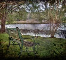 By the Lake, Pemberton, Western Australia by Elaine Teague