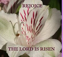 The Lord is Risen ipad case/gifts/apparel by hummingbirds