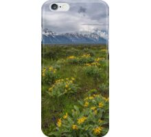 Spring in Grand Teton iPhone Case/Skin