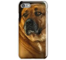 Oh no! Not another dog picture. iPhone Case/Skin