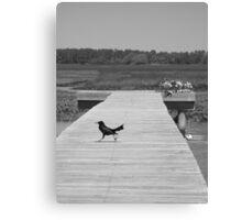 Just Passing By! Canvas Print